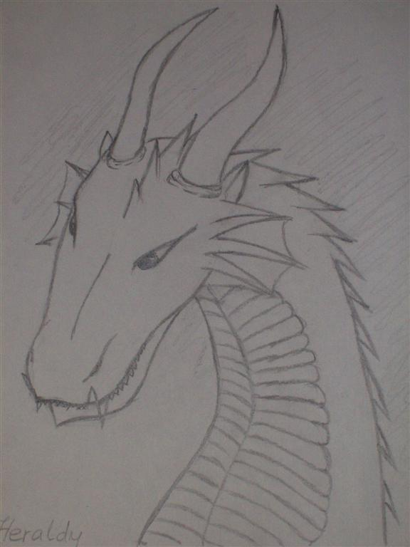 Heraldy the Dragon by Arya-DragonQueen