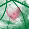Pink Heart by jurei