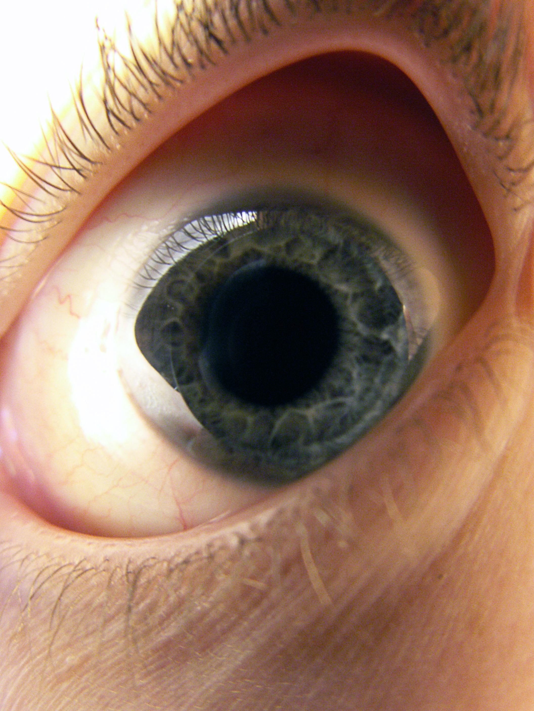 EyeStock2 by EK-StockPhotos