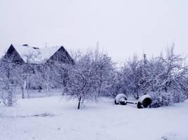 winter stock by EK-StockPhotos