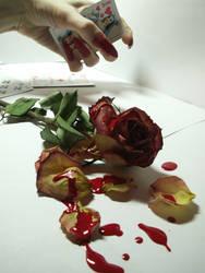 bloody rose stock 3