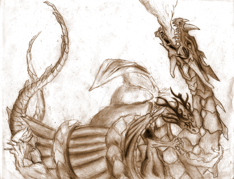 Two Dragons by Alacoplitico