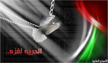 Freedom for Gaza by Amwag