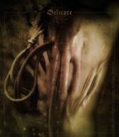 Delicate by fensterer