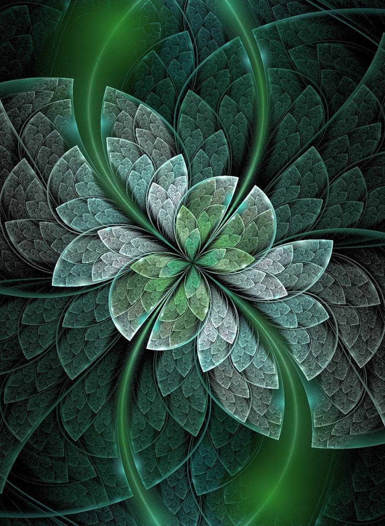 Wonderful Splits D by Kattvinge