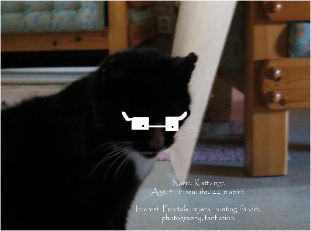 Kattvinge's Profile Picture