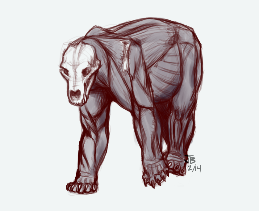 Bear Muscles by TheMeekWarrior on DeviantArt