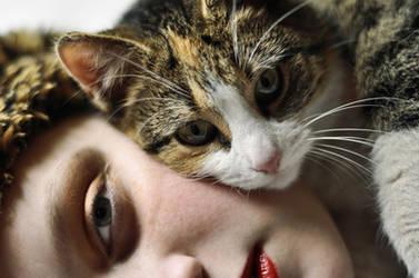 cat by paulinquua