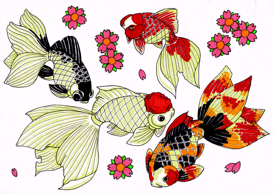 Gallery For gt Japanese Goldfish Drawing