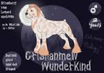 Wunderkind adult ref by MaichoMod