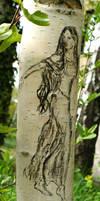 Arwen - young birch by MirachRavaia