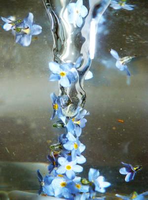 Unforgettable whirlpool by MirachRavaia