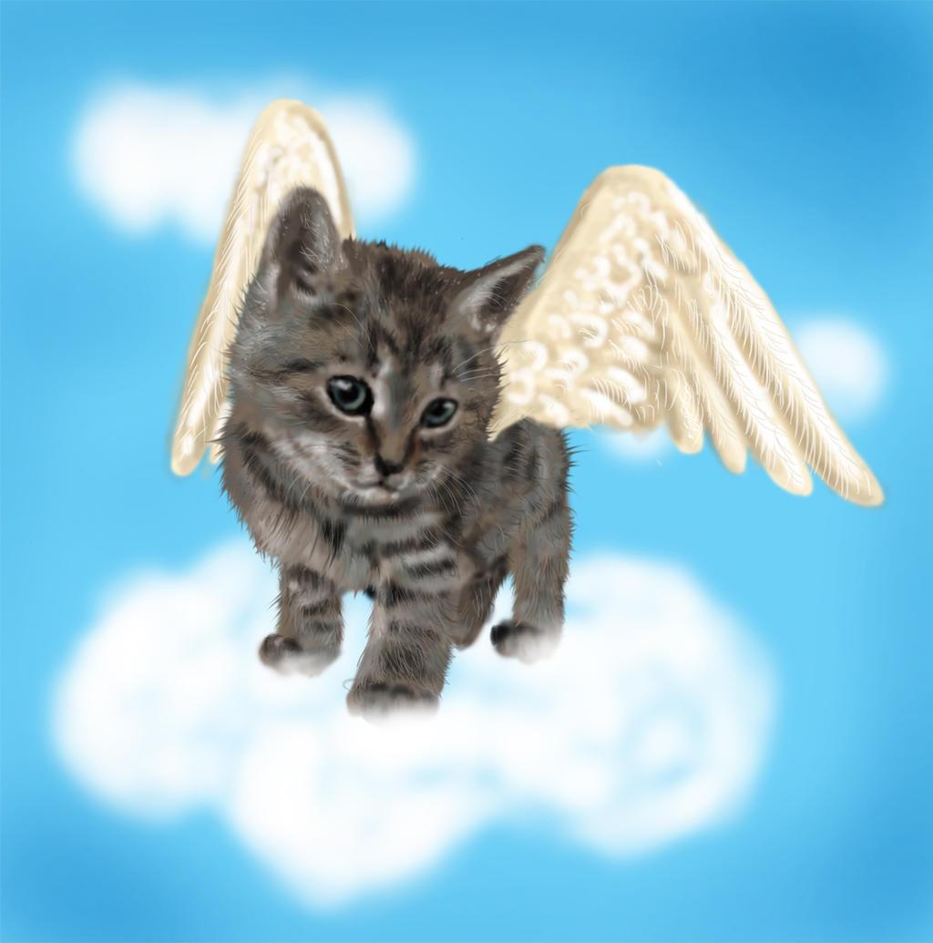 My Little Kitten Angel by MirachRavaia on DeviantArt
