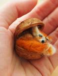 Little fennec foxie by MirachRavaia