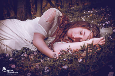 A dream of spring by MirachRavaia