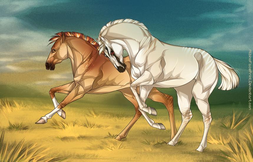 [YOUR HORSE HERE - Nordanner foals!] by AlbinoFacePrint