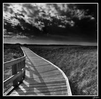 The Path by EvaMcDermott