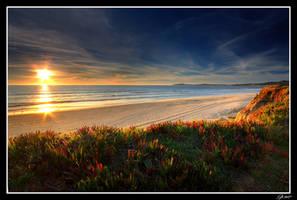 Half Moon Bay Sunset by EvaMcDermott