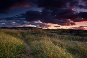 Dunes by EvaMcDermott