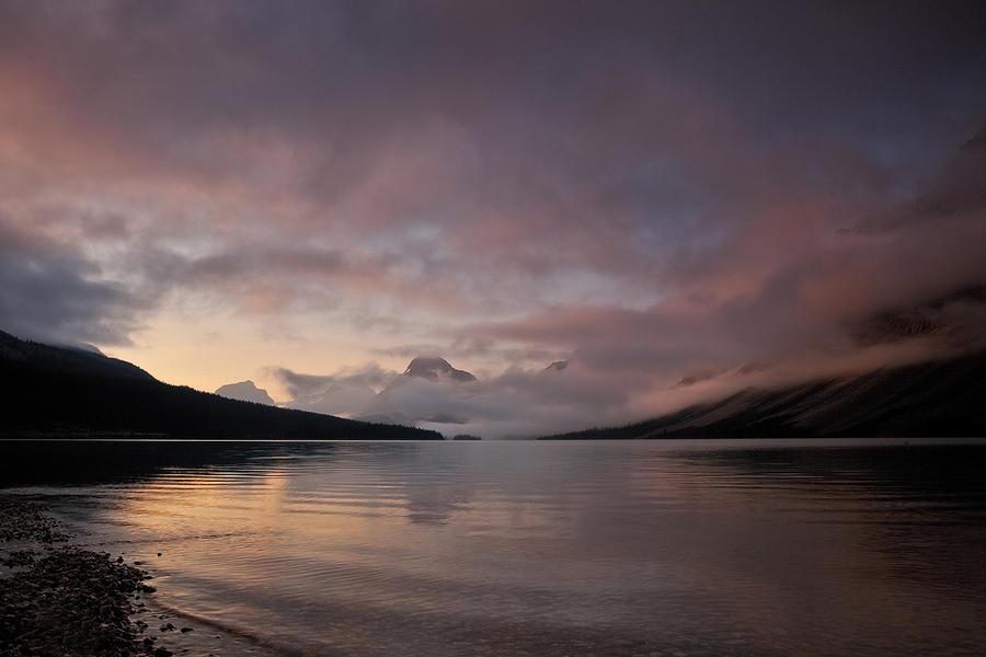 Quiet Morning by EvaMcDermott