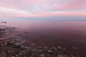 Pink Mist by EvaMcDermott