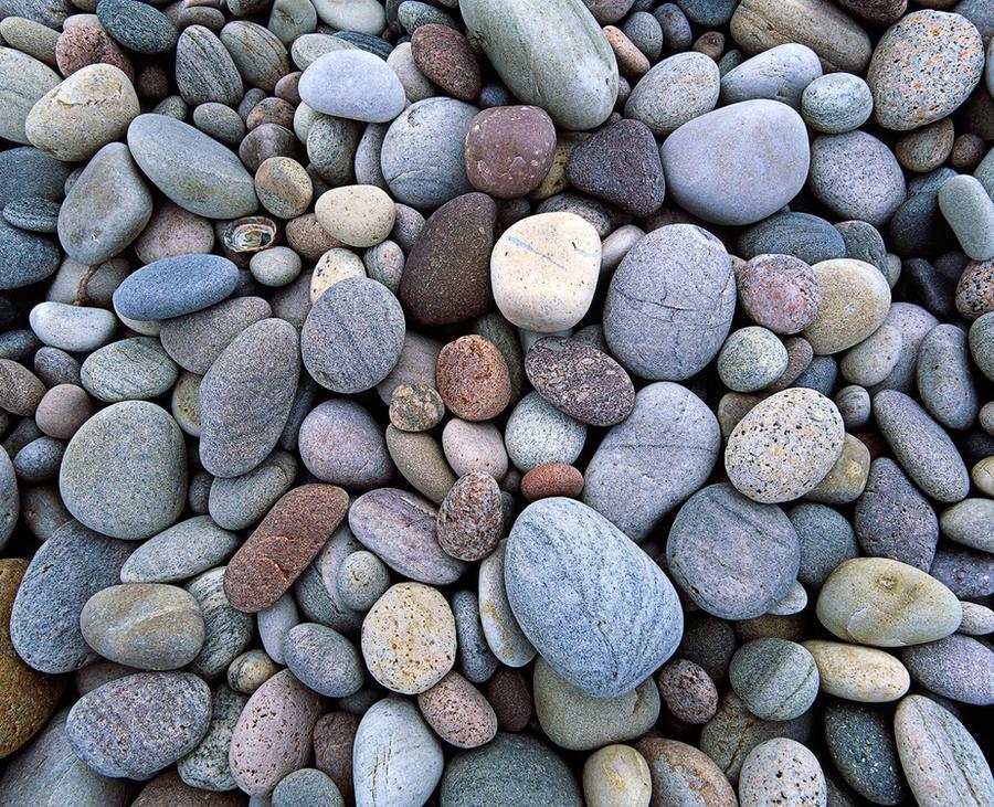 More Rocks by EvaMcDermott