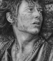 Frodo Baggins by WickedIllusionArt