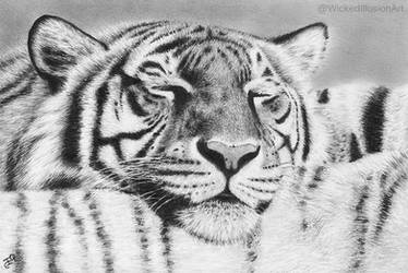 Tiger Pillow by WickedIllusionArt