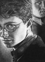Harry Potter and Draco by WickedIllusionArt