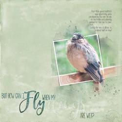 Bullfinch in Rain by Eijaite