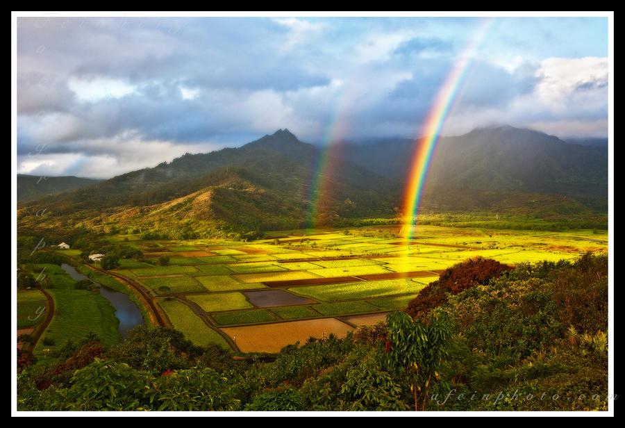 Classical Kauai by aFeinPhoto-com