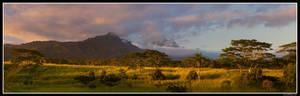 Kauaian Serengeti