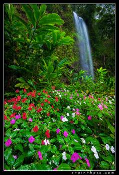 Gumby Falls