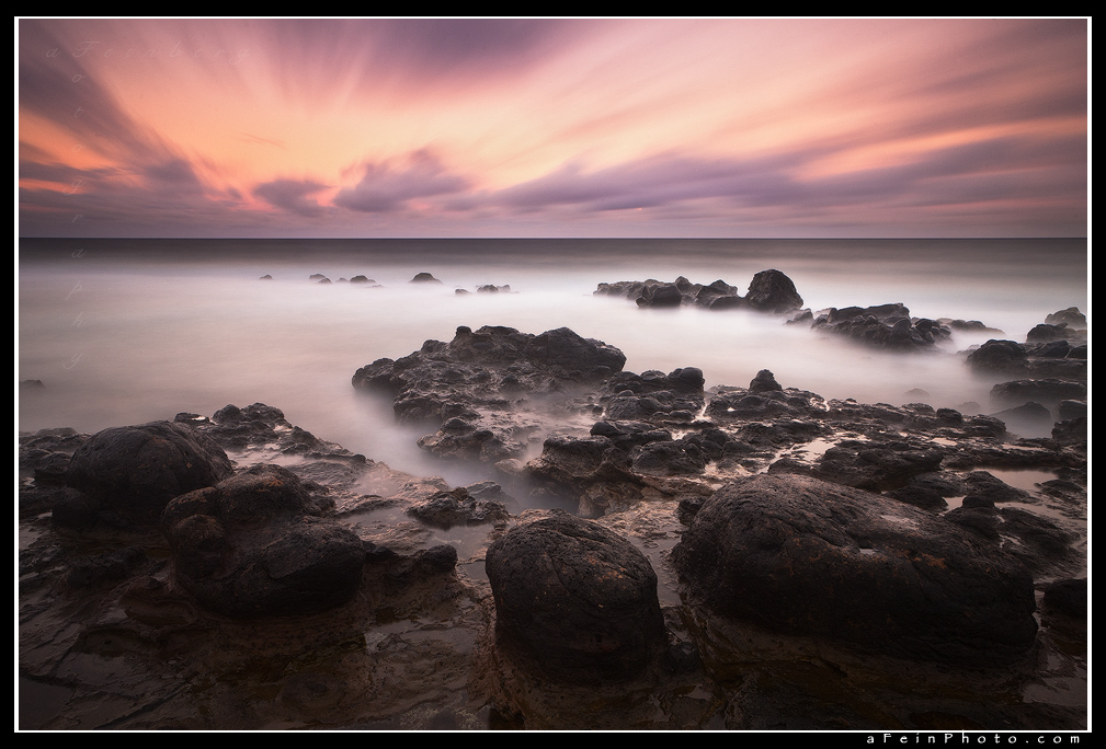Purple Haze by aFeinPhoto-com
