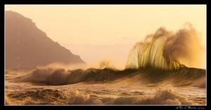 Wavehawk