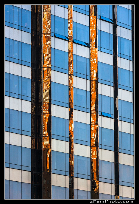 Untitled NYC by aFeinPhoto-com