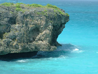 Coral Rocks by nwinder