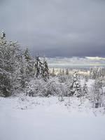 Winter Stock 22 by chamberstock