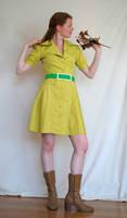 Lime Dress Stock 4