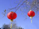 Chinese lanterns stock