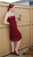 Red Dress Stock 12