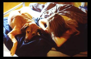 Good Morning Dog by el-vis