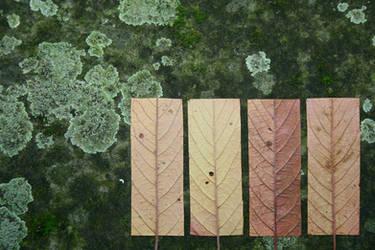 Geometric Autumn II