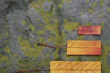 Geometric Autumn III