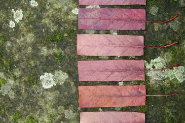 Geometric Autumn V