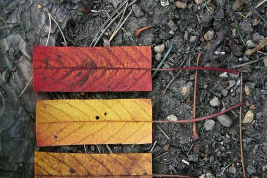Geometric Autumn X