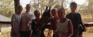 Giraffe + family