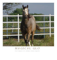 .Magical Glo. by 66And66