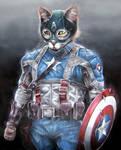 AVENGERS: Captain Ameowicat