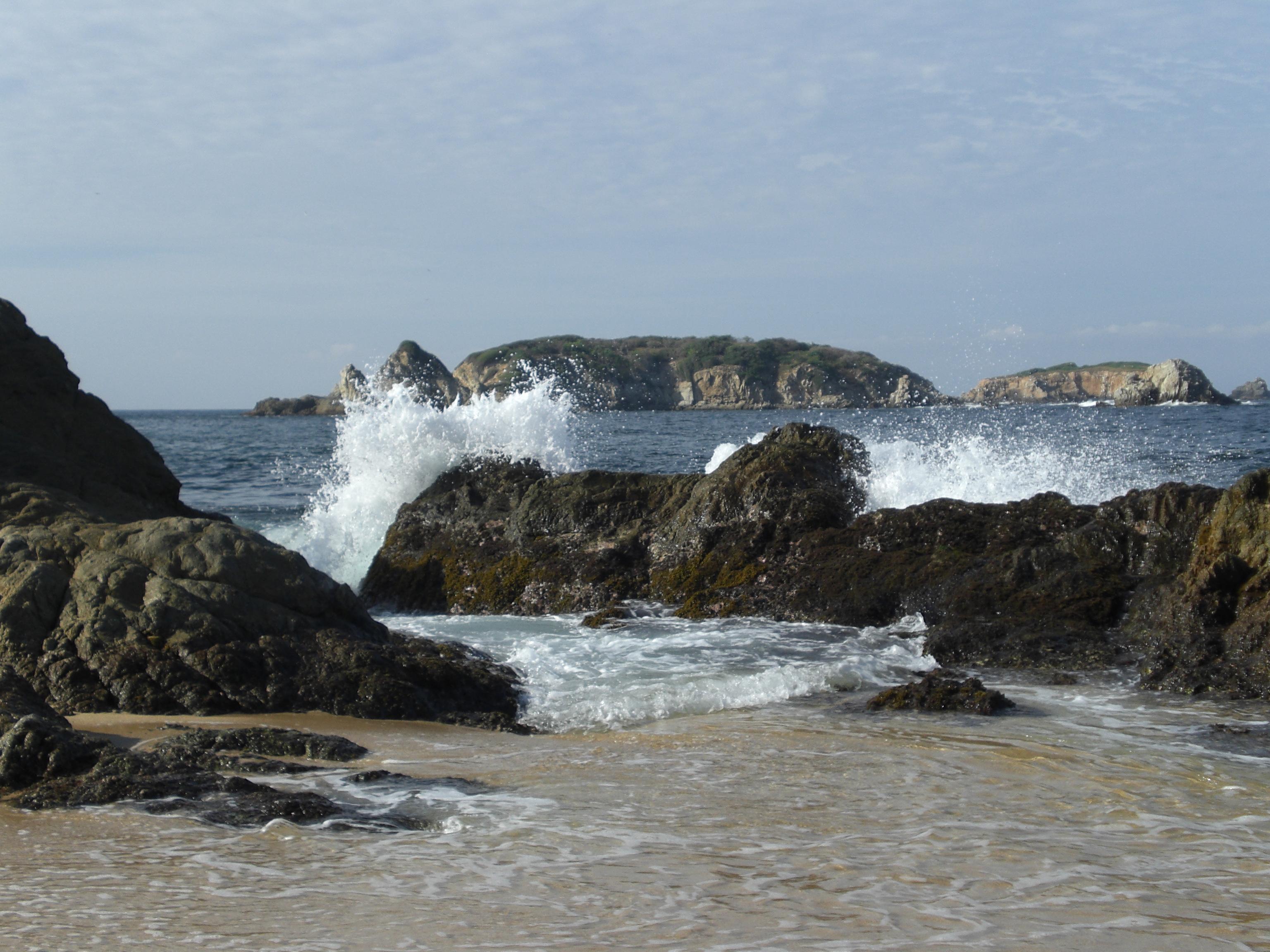 06 ocean by greenleaf-stock